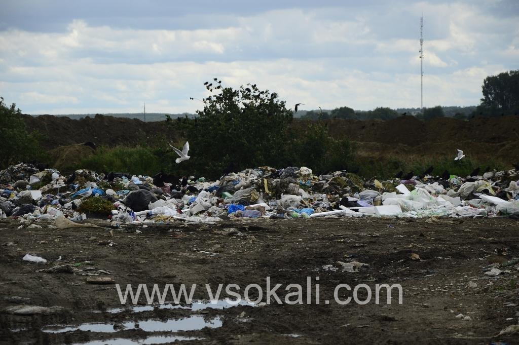 Питання львівського сміття