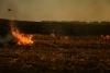 Пожежі на Сокальщині